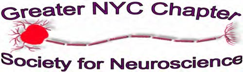 Neuroscience Logo